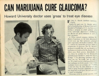Dr. John Merritt's Call to Reschedule Marijuana
