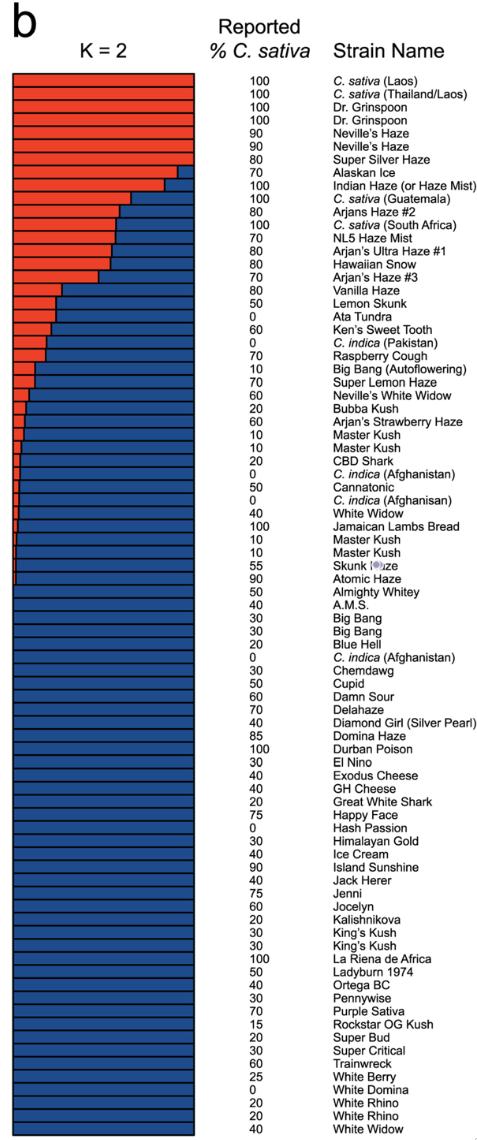 Sativa and indica genetics gap quantified