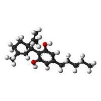 CBD promotes cardiovascular health